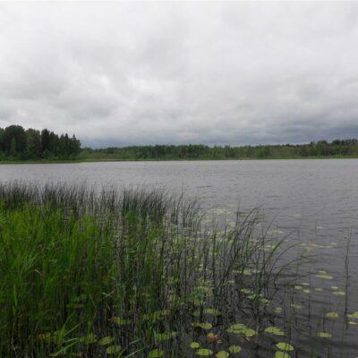 Murata ezers un Vaidavas upe